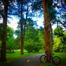 biketrail1