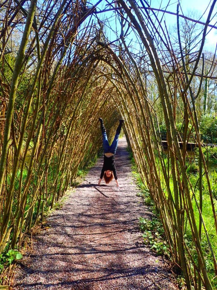 blarney-grounds